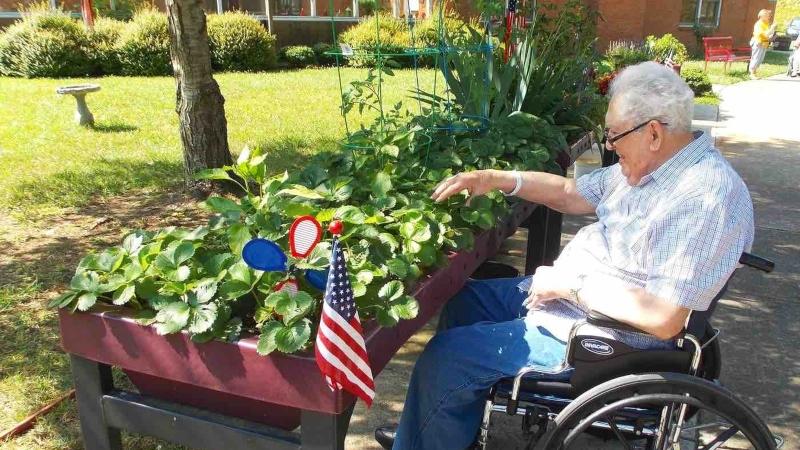 wheelchair friendly gardening